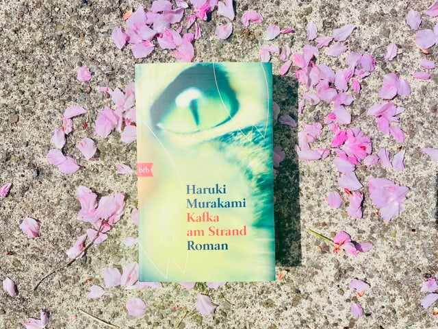 Der Roman «Kafka am Strand» von Haruki Murakami liegt auf Kirschblüten