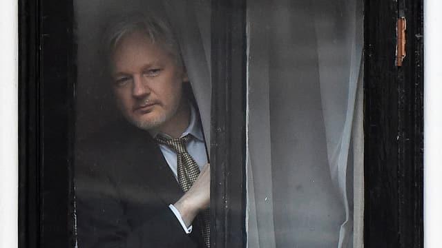 Assange schaut zum Fenster hinaus.