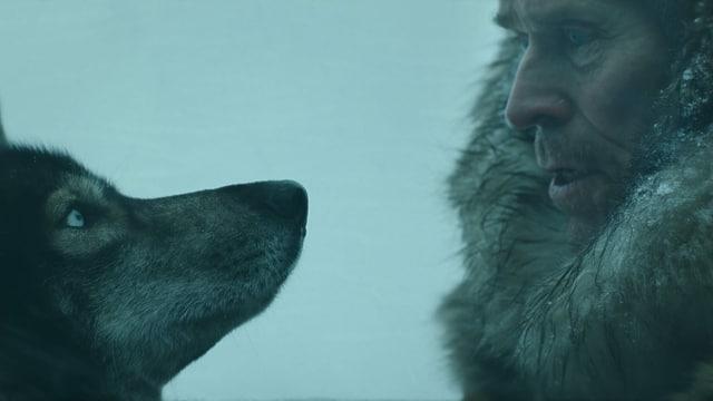 Nahaufnahme der Profile eines Schlittenhundes und seines Herrchen (verkörpert von Willem Dafoe).