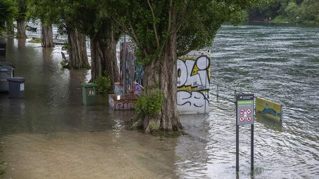 Ein Bild des Rhone-Ufers nahe Genf