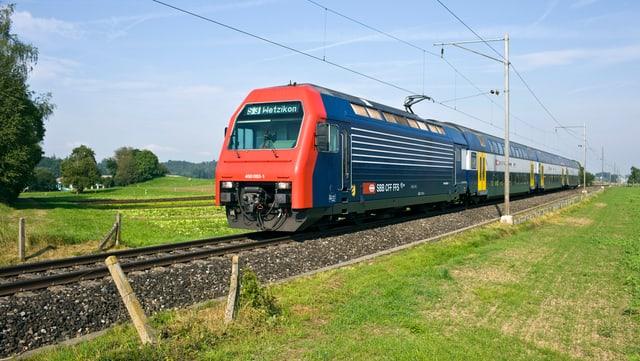 Rot-blauer Zug fährt durch grüne Landschaft.
