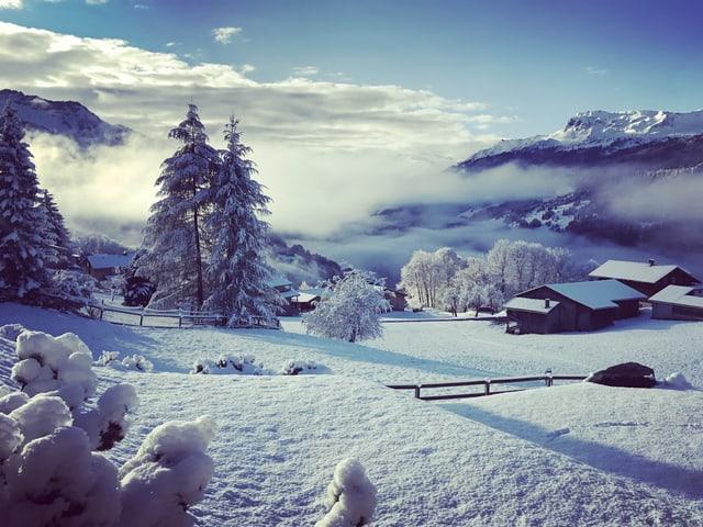 Blick in den tiefen Winter.