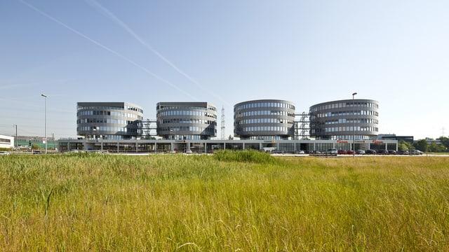 Vier runde Bürogebäude im Katon Zug: Im ersten Turm von links arbeitet Transocean. (keystone)