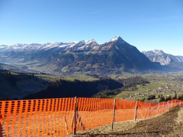 Blauer Himmel im Berner Oberland. Im Vordergrund Fangzäune für der Schnee auf grüner Wiese.