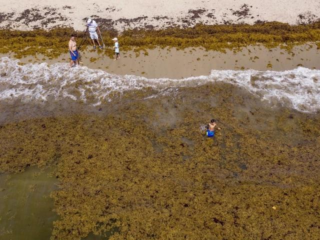 Strand von Lake Worth, Florida, von oben: voller Algen, ein Junge im Wasser.