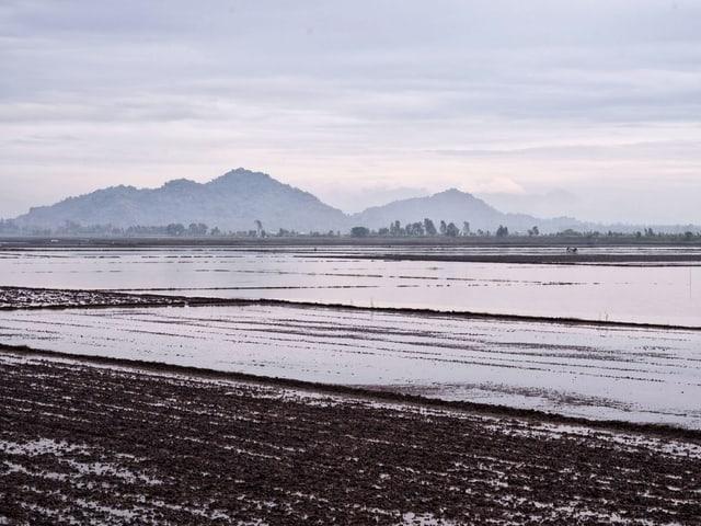 Das Mekong-Delta.
