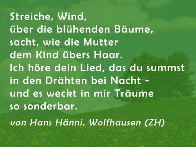 Gedicht von Hans Hänni: Streiche, Wind, über die blühenden Bäume, sacht, wie die Mutter dem Kind übers Haar. Ich höre dein Lied, das du summst in den Drähten bei Nacht - und es weckt in mir Träume so sonderbar.