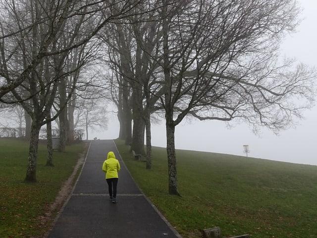 Mensch mit Regenschutz spaziert einen Weg hinauf. Dieser ist feucht, darum herum Nebel und Bäume. Die Sicht ist schlecht.