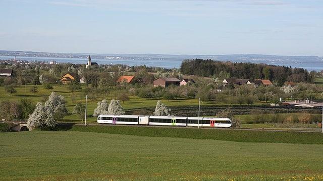 Thurbo-Zug auf der Strecke zwischen St. Gallen und Konstanz