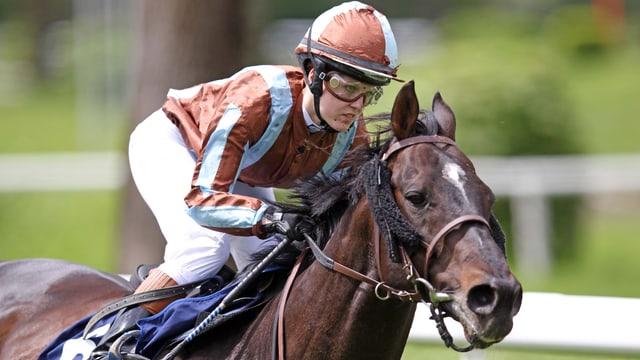 Jockey und Pferd in Aktion.