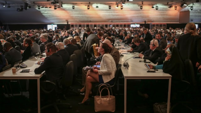 Zu sehen sind Teilnehmer der Klimakonferenz.
