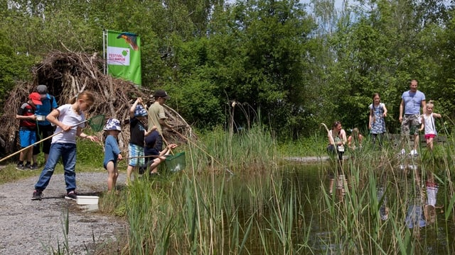 In lai a Neeracherried, Turitg nua che uffants e creschids observan la natira durant il festival da natira.