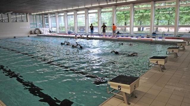 Das 25-Meter-Becken in der St.-Jakobshalle, es findet gerade ein Schwimmtraining statt.