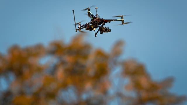 Eine Drohne über einem Baum.