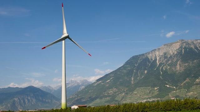 Die zuständige Grossratskommission stellt sich bezüglich Windkraft gegen die Pläne der Regierung.