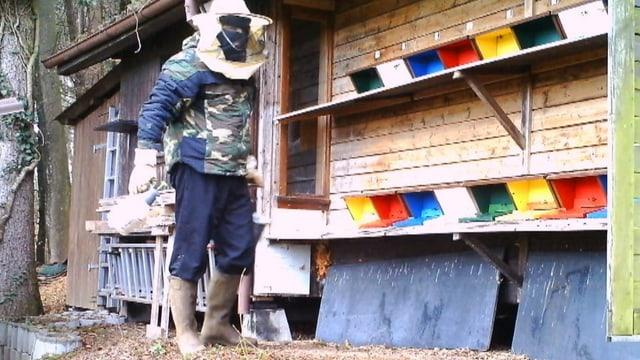 Maskenmann tötet Bienen