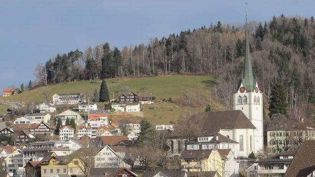 Dorf Teufen: zu sehen Kirche und Häuser