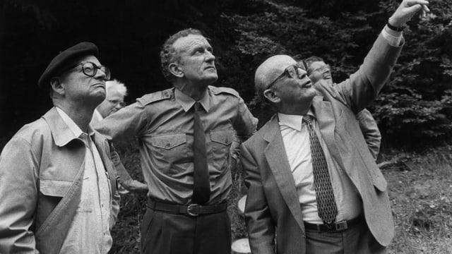Drei Männer stehen in einer Lichtung; ein Mann zeigt in die Höhe.