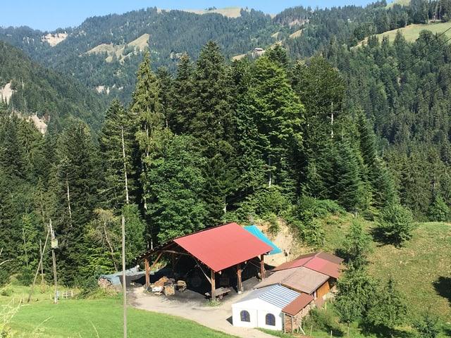 Rotes Holzdach vor einem Wald.