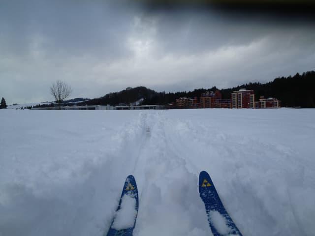 Zwei Skispitzen ragen aus dem Schnee, im Hintergrund ein paar Häuser.