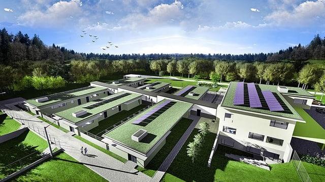 Visualisierung geplantes Tierheim.