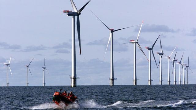 Offshore-Park vor der dänischen Nordseeküeste. Dänemark holt über einen Drittel der Energie aus Wind.