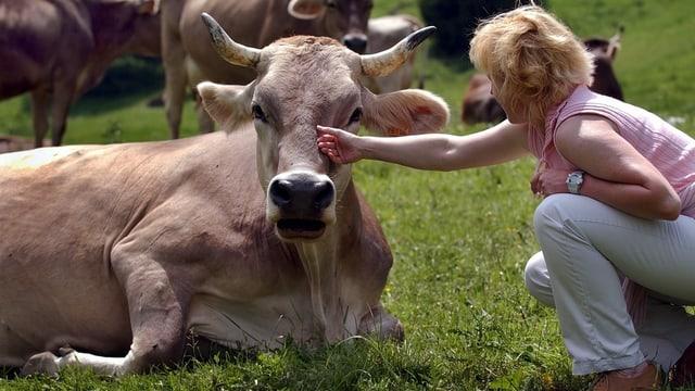 Geschlechtergraben bei Tierschutzvorlagen