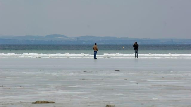 Uferpartie mit Spaziergängern am Bodensee