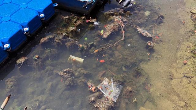 Dreck und Plastik im Wasser