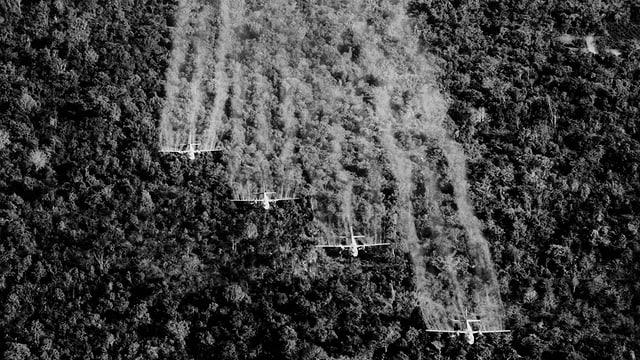 Flugzeuge versprühen weissen Nebel über einem Urwald-Gebiet (Schwarzweiss-Aufnahme)