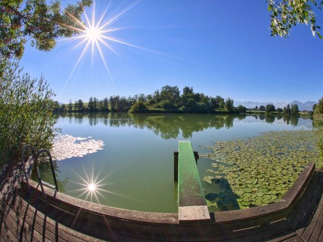 Die Sommersonne wird an der glatten Oberfläche einens Sees gespiegelt.