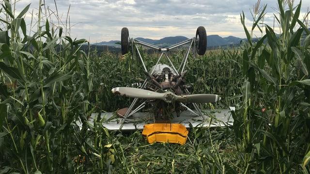 Flugzeug in Feld