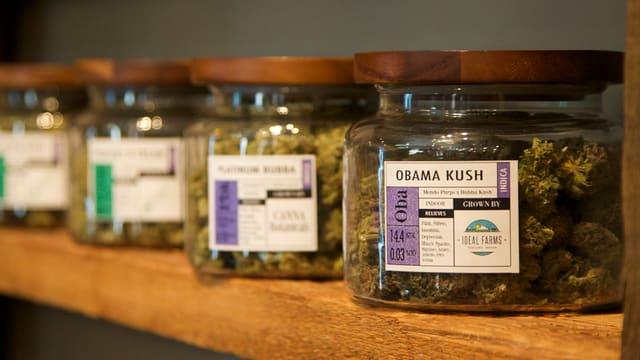 Gläser mit Marihuana stehen in einem Gestell.