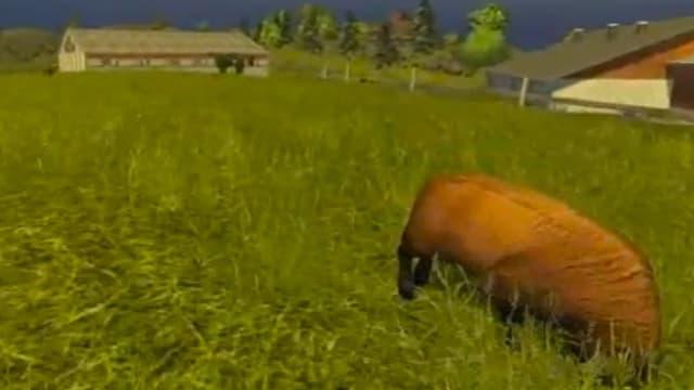 Ein Screenshot aus dem Landwirtschafts-Simulator 2013, der eine Wiese zeigt mit einer Art Schaf.