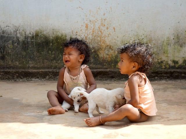 Zwei Kinder sitzen am Boden und spielen mit Hundewelpen.