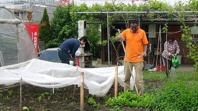 Männer und Frauen arbeiten in einem Garten