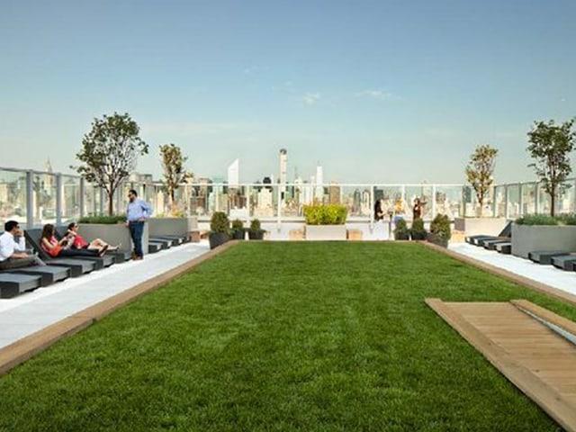 Dachterrasse mit Rasen und Liegestühlen.