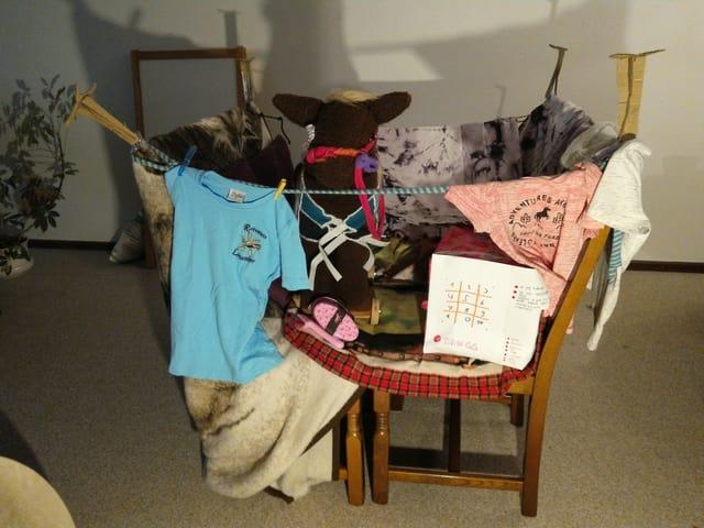 Paar Stühle eingehüllt in einer Decke und T-Shirst, mit Propellern und einem Pony in der Mitte