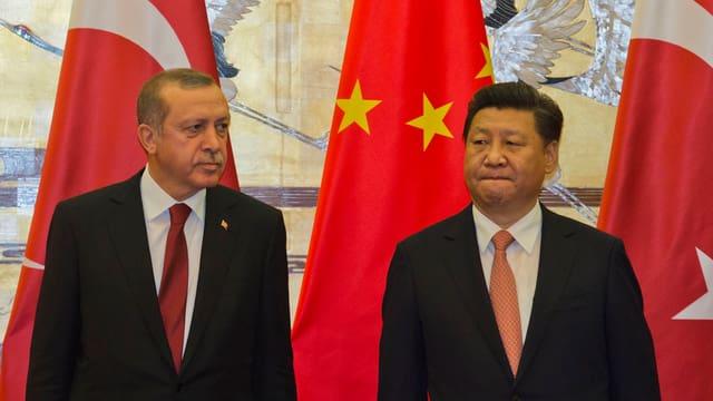 Erdogan blickt zu Li Keqiang.