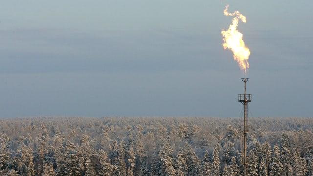 Eine Gasflamme brennt über einem schneebedeckten Wald.
