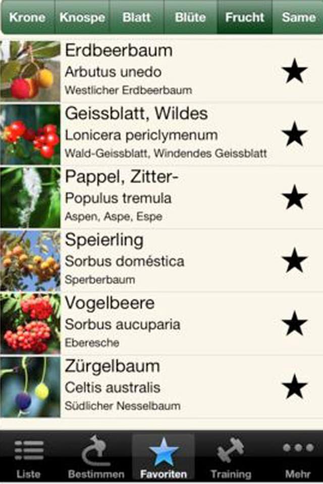 App iForest