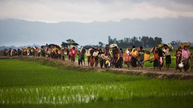 Flüchtlinge auf einem Weg.