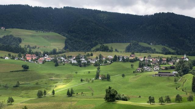 Wiesen, Bäume, Land Häuser