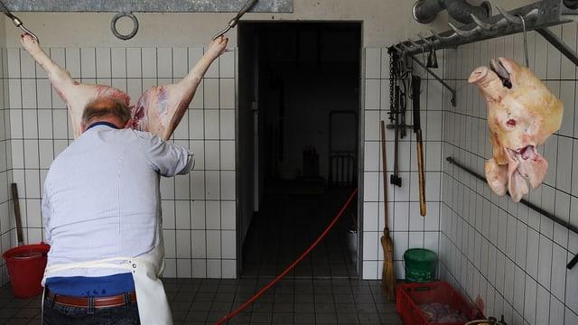 Ein Metzger bearbeitet ein geschlachtetes Schwein.