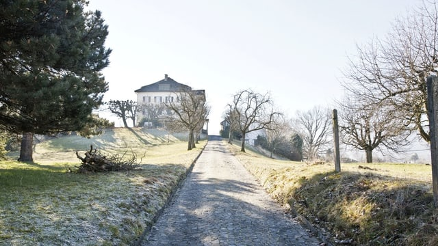 Ein Weg führt zu einem Haus in einer Wiesenfläche.