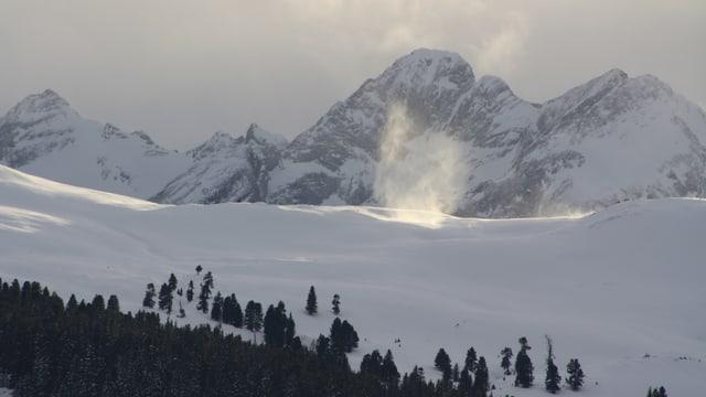 Schneeteufel im Sonnenlicht.