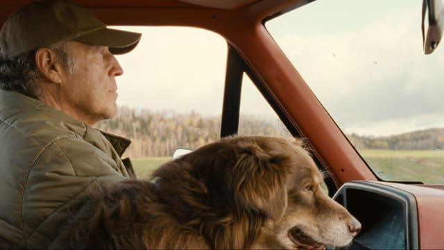 Ein Mann mit Mütze in einem Auto auf dem Land, auf dem Beifahrersitz ein Hund.