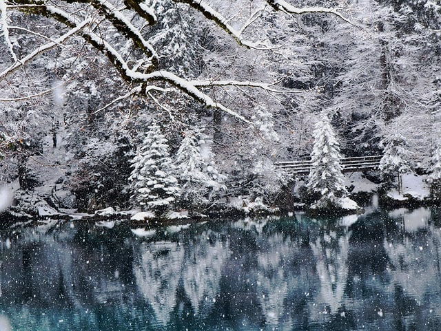Kleiner blauer See mit verschneiten Bäumen am Ufer