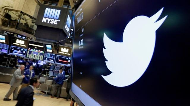 Twitter-Vogel auf Leinwand dahinter Blick auf die New Yorker Börse