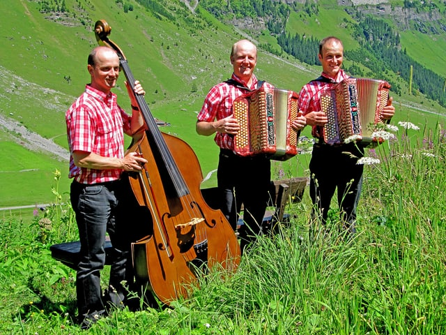 Ein Kontrabassist und zwei Akkordeon-Spieler in rot-weiss karierten Hemden auf einer grünen Wiese.